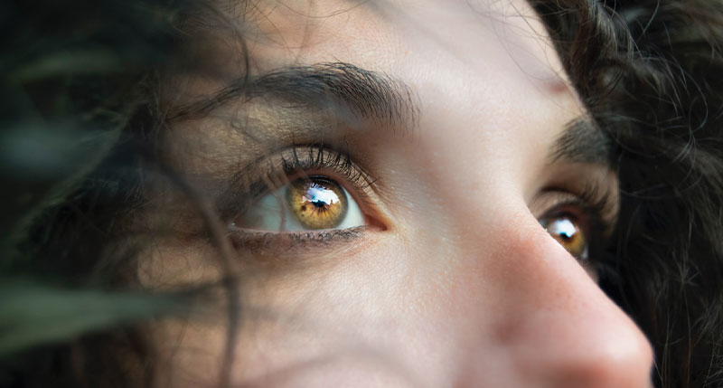 eyebrows eyelashes adult pediatric eyecare local eye doctor near you