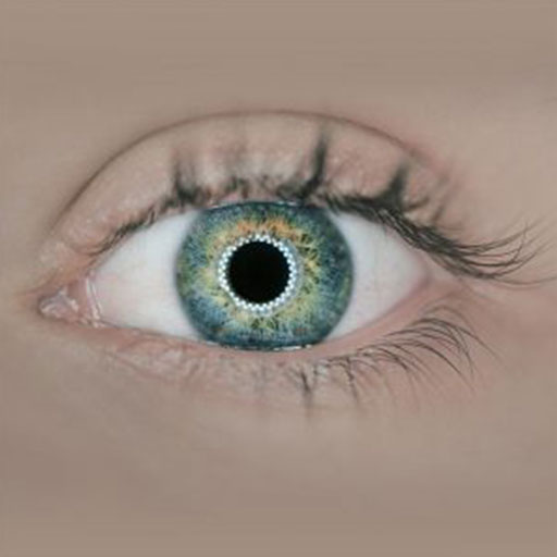 mcray denton comprehensive eye exams1