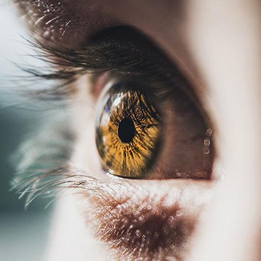 mcray denton ocular disease